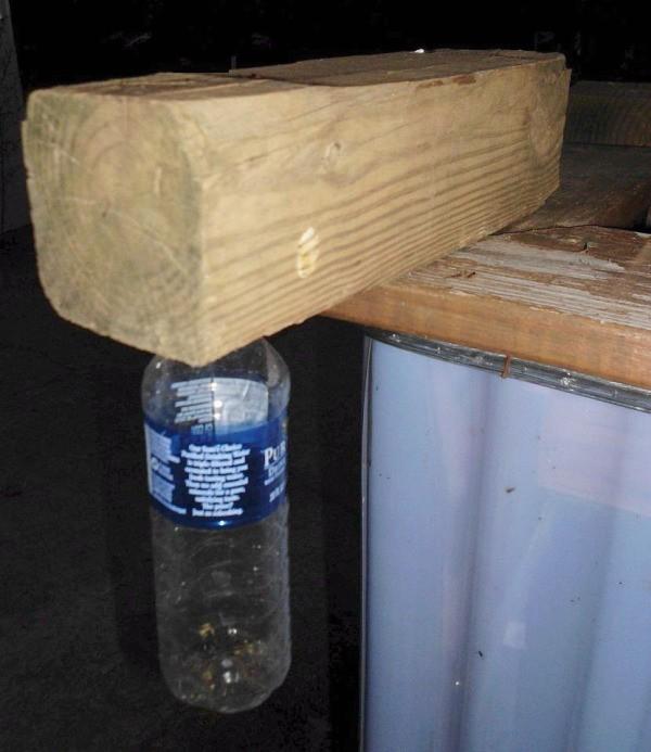 How To Make A Carpenter Bee Trap Thriftyfun