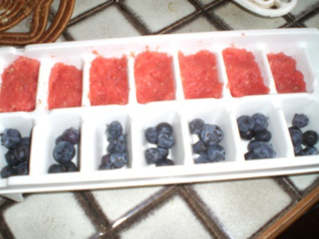 Add Fruit to Ice Cubes