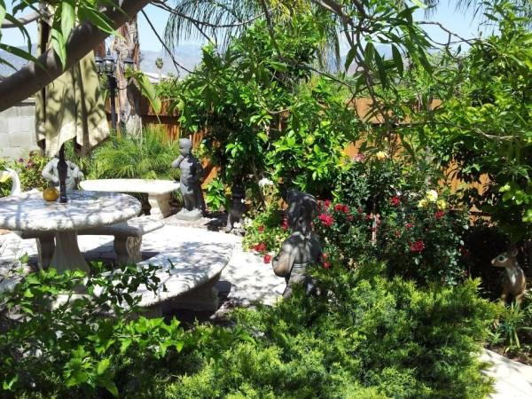 My Mother's Yard (Redlands, CA)