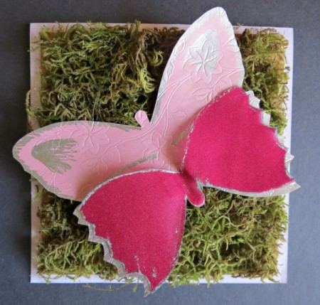 Forest Butterfly Birthday Card