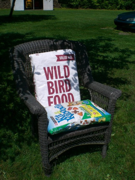 outdoor chair with pillows covered with bird seed and dog food bags