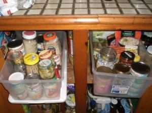 food in clear plastic bins