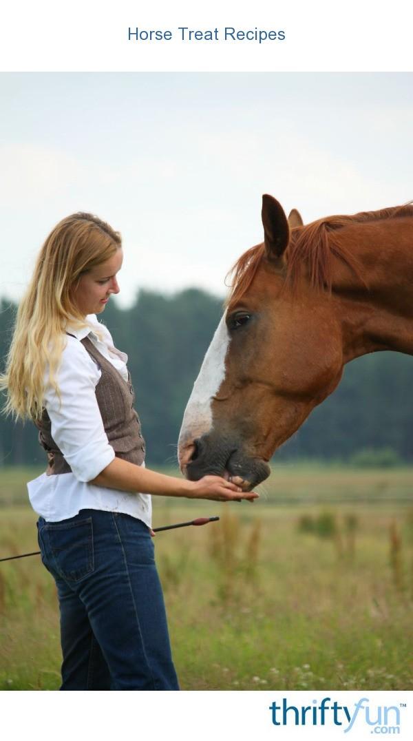 Horse Treat Recipes Thriftyfun
