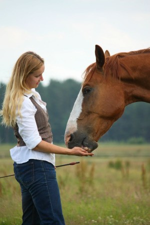 young woman feeding a treat to her horse