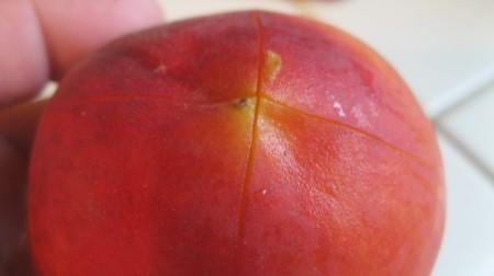 scoring peach