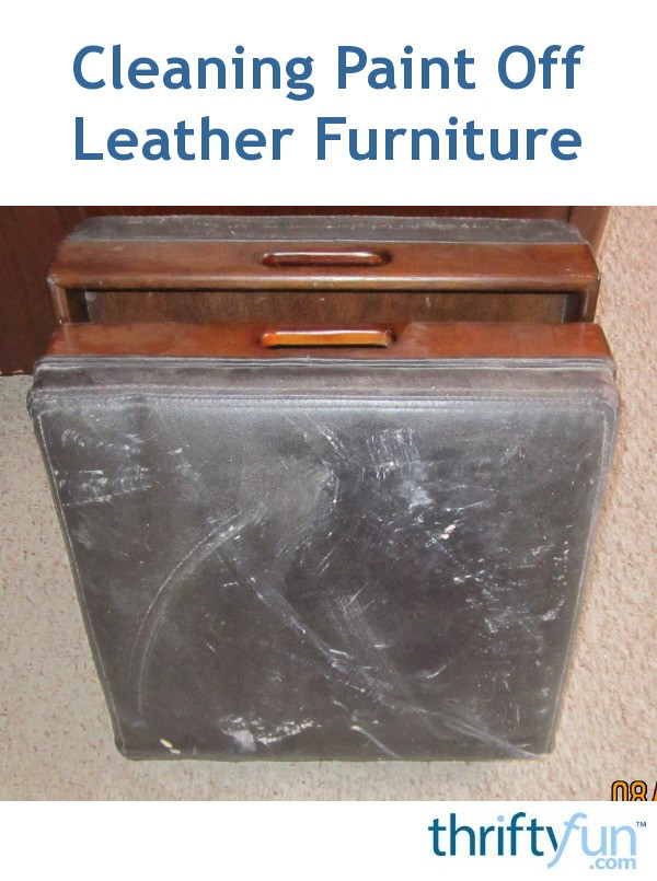 Cleaning paint off leather furniture thriftyfun for How to paint leather furniture