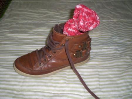 litter filled sock in shoe