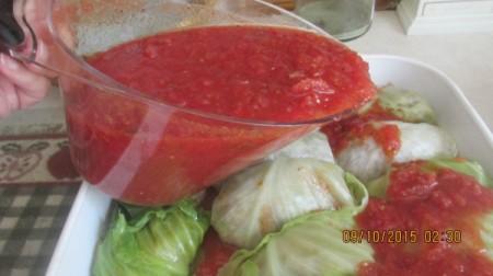 folded stuffed leaf on sauce