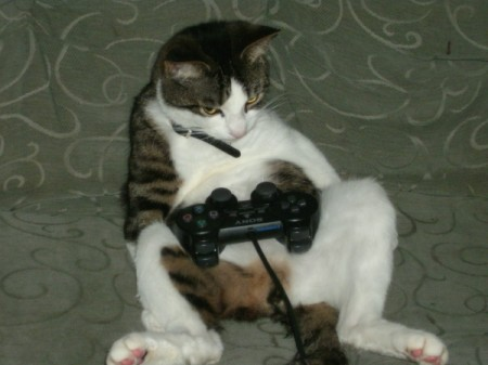Skittles with Playstation controller