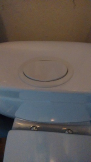 Repairing Cistern Flush Button