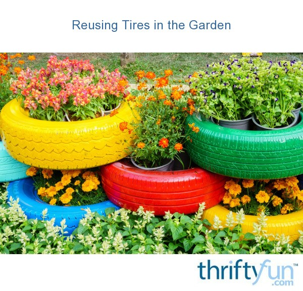 Reusing Tires in the Garden | ThriftyFun on tire art, tire landscaping, tire jewelry, tire fences, tire ponds, tire walls, tire water features, tire concrete, tire trees, spring designs, roof garden designs, tube garden designs, tire furniture,