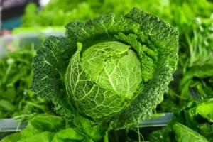 closeup of a cabbage