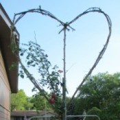 A trellis made from branches, shaped like a heart.