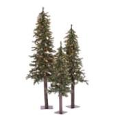trio of skinny decorative trees