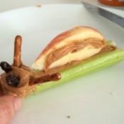 Making a Peanut Butter Snail