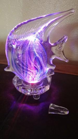 glass fish light