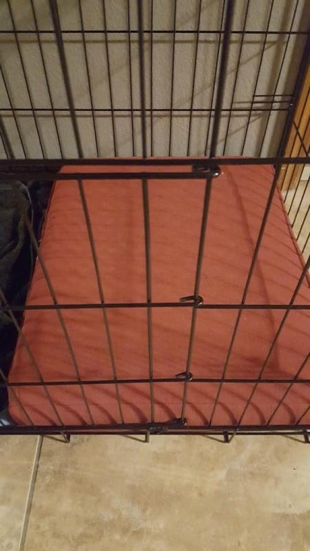 crate with orange cushion