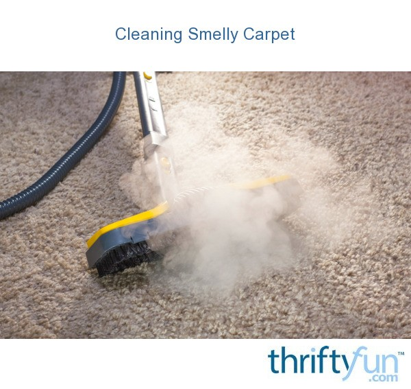 Cleaning Smelly Carpet Thriftyfun