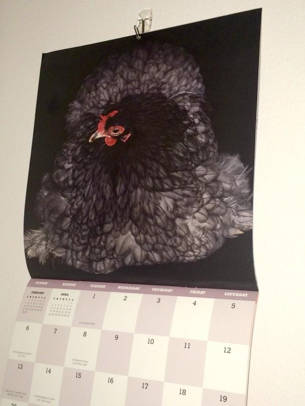 Repurposing Calendar Pictures | ThriftyFun