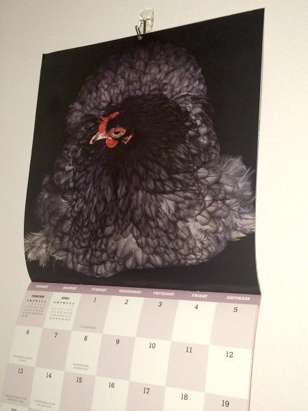 Repurposing Calendar Pictures