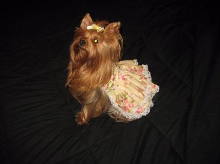 Abby wearing a skirt