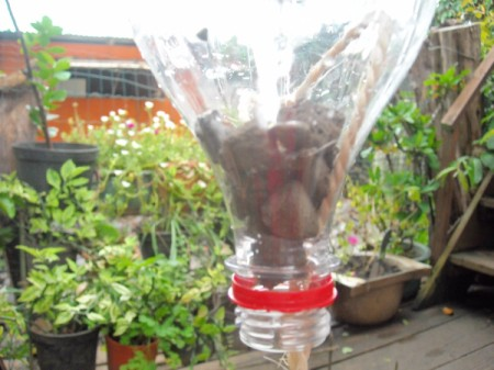 Recycled Plastic Bottle Herb Planters