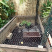 Building a Turtle Home in Your Garden - chicken wire