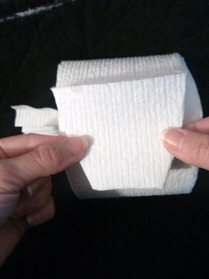 Toilet Paper Origami Fan