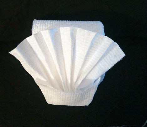 Making A Toilet Paper Origami Fan Thriftyfun