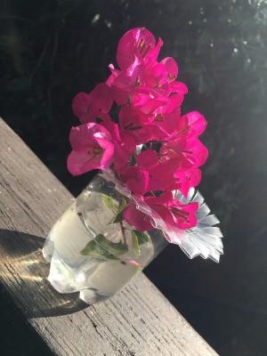 Plastic Bottle Starburst Vase
