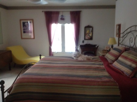 Bedroom Curtain and Throw Rug Color Advice