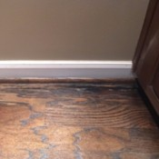 Identifying Cat Urine Stains on Hardwood Floor