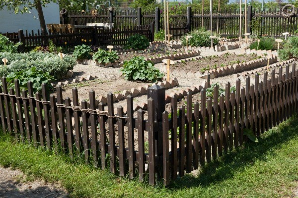 Fencing Your Vegetable Garden ThriftyFun