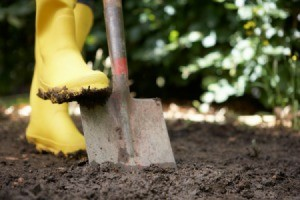 Digging Tips for Gardeners