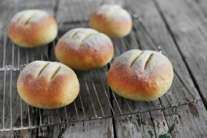 Cornmeal Roll Recipes