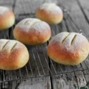 Cornmeal Roll Recipes