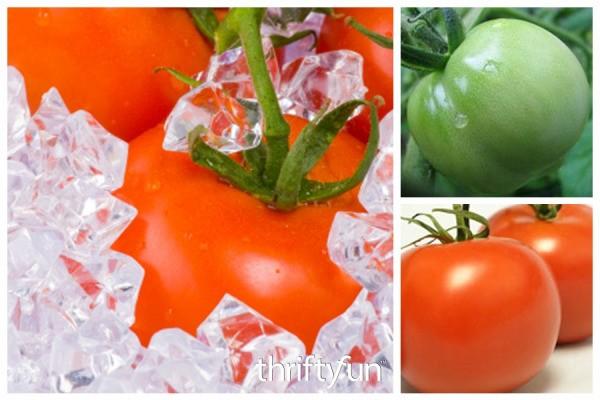 Freezing Tomatoes Thriftyfun