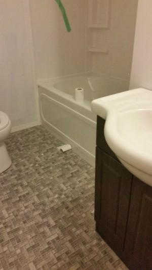 Bathroom Paint Color Advice