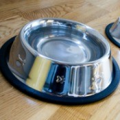 Close up image of dog's water dish on wood plank vinyl flooring
