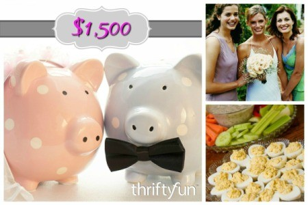 Planning a Wedding for $1500