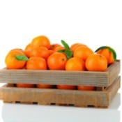 Clementines in wooden box against white background