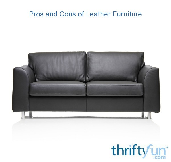 Pros And Cons Of Leather Furniture Thriftyfun