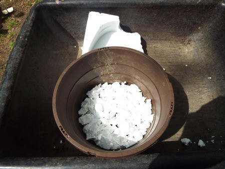 Styrofoam in plant pot