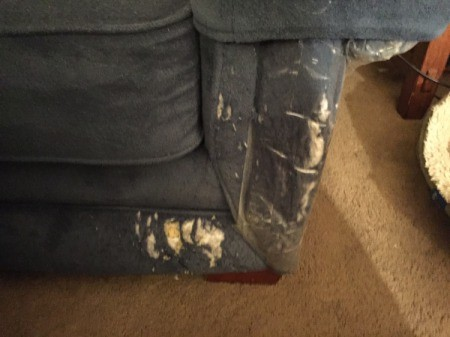 damaged fabric on couch