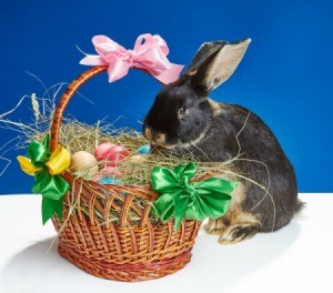 A decorated wicker Easter basket.