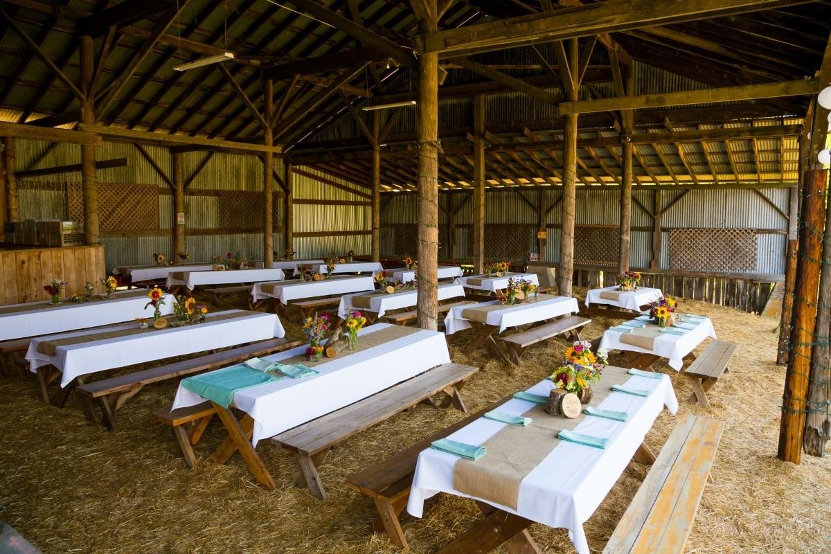 Decorating A Barn For A Wedding Reception My Frugal Wedding