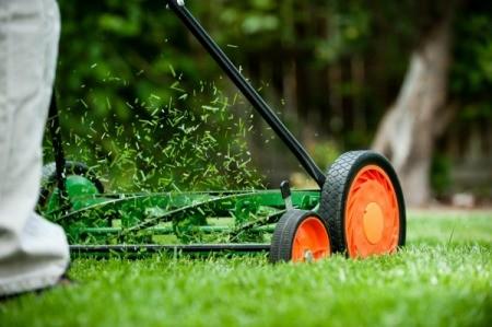 A push lawn mower cutting the grass