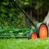 A push lawn mower cutting the grass