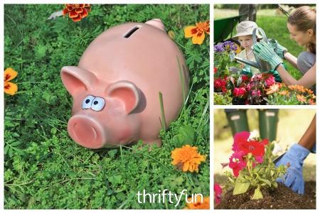 Tips for Cost Efficient Flower Gardening