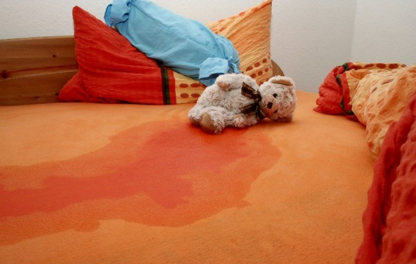 Bed With Wet Area And Teddy Bear